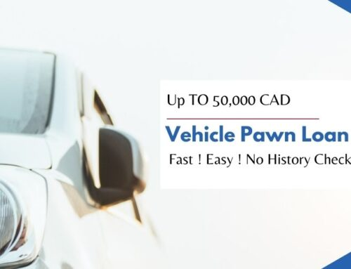 Vehicle Pawn Loans – What Are They?